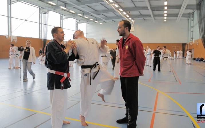Démonstration d'efficacité d'une clé de bras avec Philippe Galais en Nihon Tai Jitsu