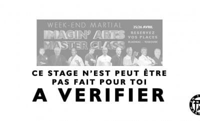 stage arts martiaux masterclass à Toulouse Blagnac