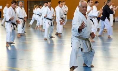 masterclass 2015 Blagnac arts martiaux karaté