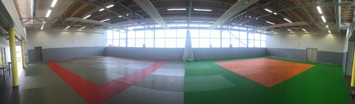dojo blagnac arts martiaux