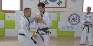 Hapkido & Sonmudo - Corée du Sud - Téléchargement HD
